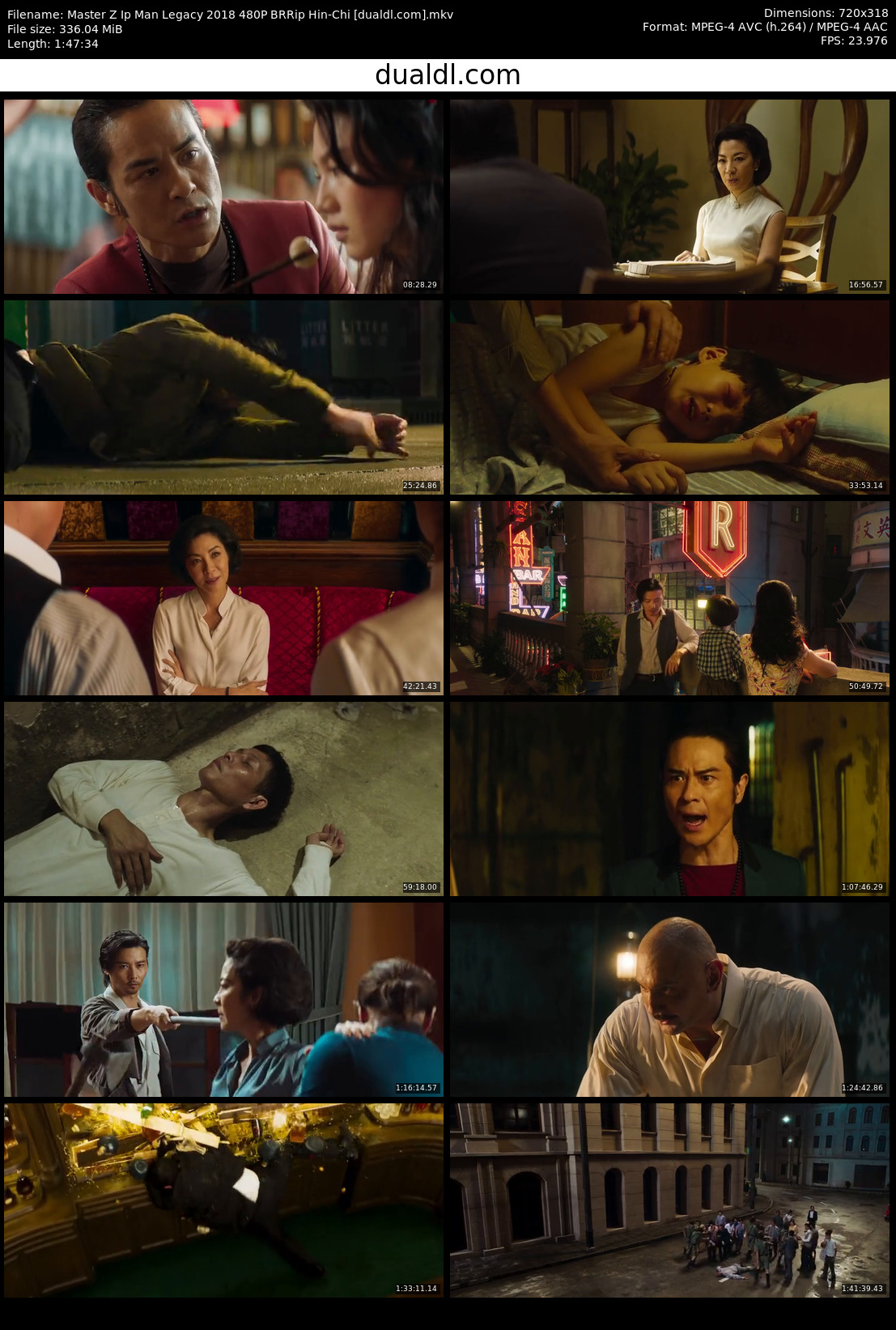 Master Z Ip Man Legacy 2018 480P BRRip Hin-Chi Download